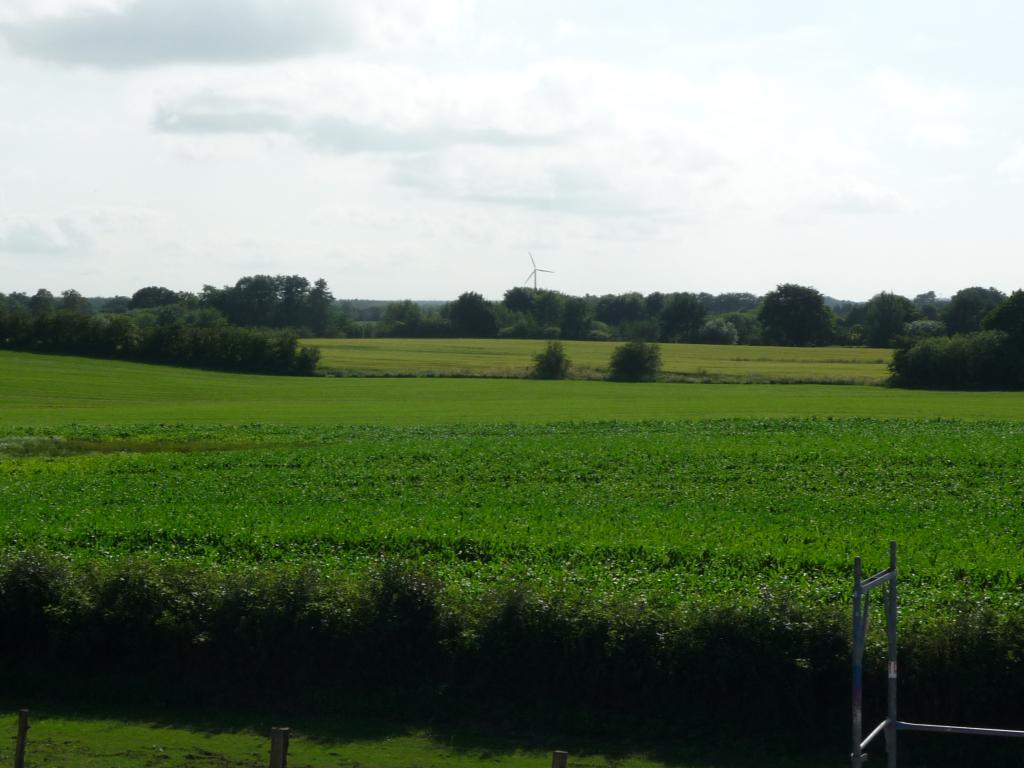 Blick auf das Feld hinter dem Haus