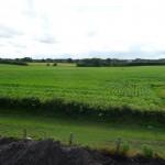 180°-Blick auf das Feld vom Spitzboden aus - Bild 2