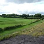 180°-Blick auf das Feld vom Spitzboden aus - Bild 4