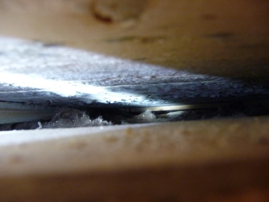 Schimmel oben am Holz, ca. 5 Latten um die Bodenluke herum :-/